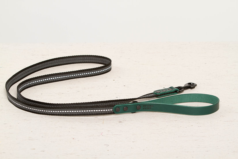 Reflective, rubber covered green leather dog leash
