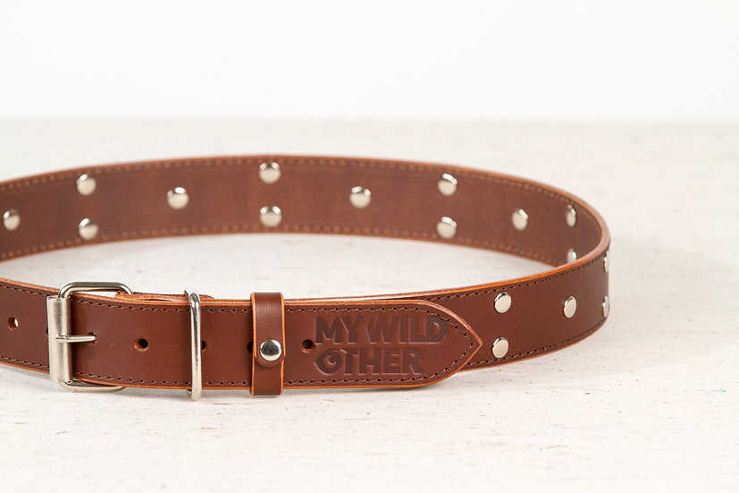 Human's belt spikes on brown