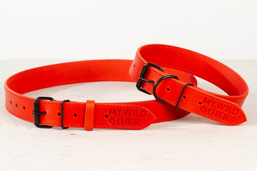 Bundle. Full grain, red leather dog collar and matching belt