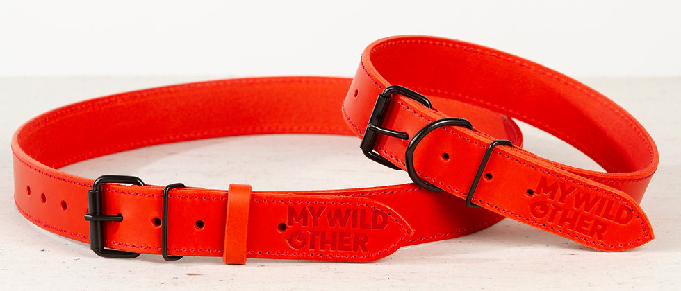 Bundle. Full grain leather dog collar and matching belt