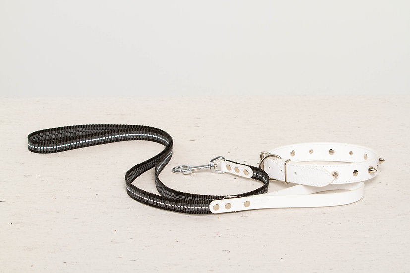 Bundle. Full-grain, white studded & spiked leather dog collar and matching leash