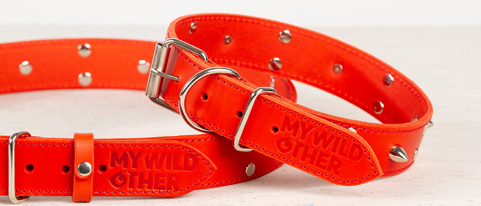 Bundle. Full grain, studded & spiked leather dog collar and belt