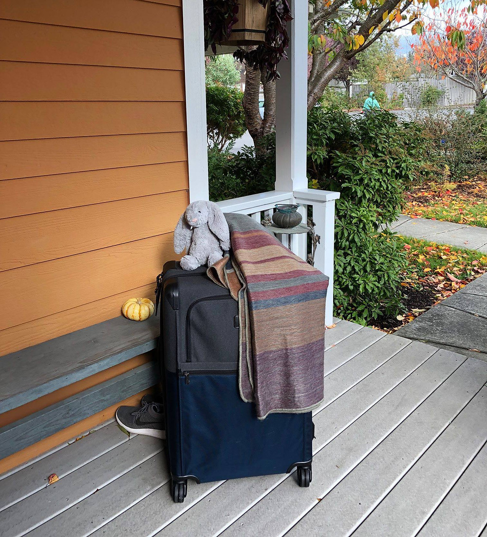 My suitcase and bunny awaiting departure on my porch