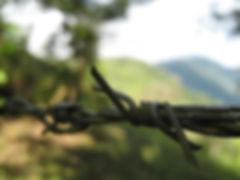 Valle de Anton, campo, India dormida, Panama