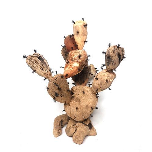Cactus Driftwood