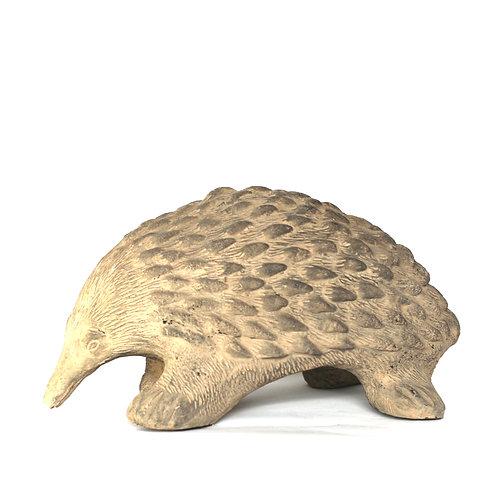 Porcupine on Stone