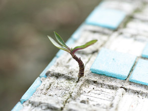 3  วิธีปลุกพลังความหวังในชีวิตขึ้นมาใหม่