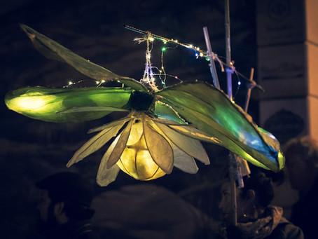 Rivières de Lumières souhaite agrandir son équipe pour les ateliers de lanternes!