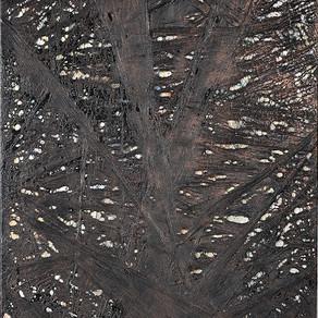 l'arbre qui cache la clairière 2015