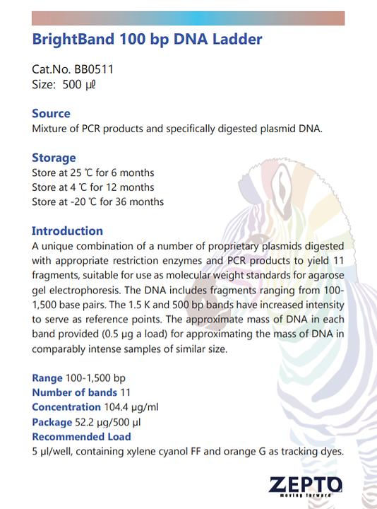 100bp DNA Ladder.png