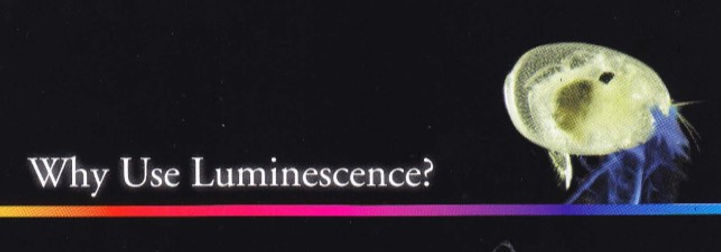 Luminescence.jpg