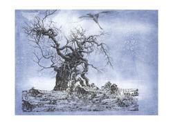 Baum Tschechien Radierung 14