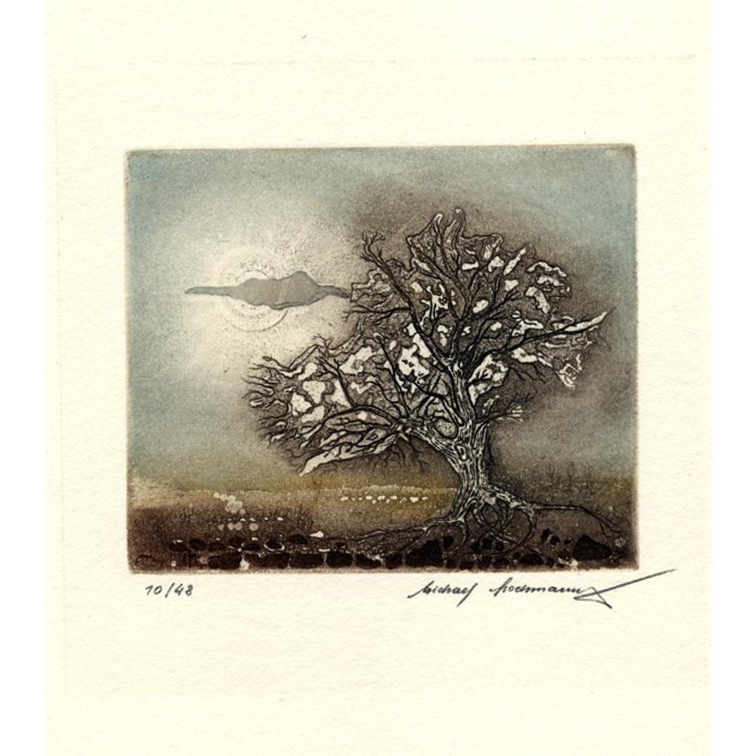 Baum im Licht Radierung 12