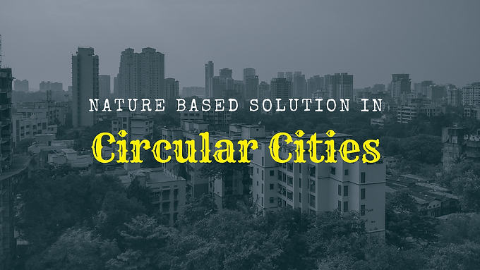 Nature-based solutions for a circular city