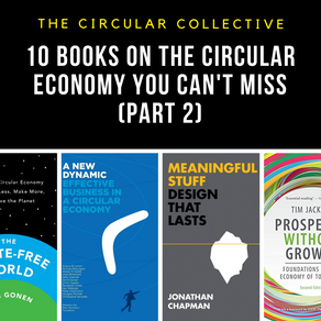 Ten books on the Circular Economy you can't miss (Part 2)!