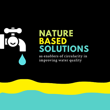 Nature-based solutions as enablers of circularity in improving water quality