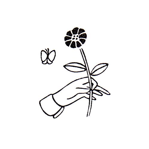 Flower & a Butterfly