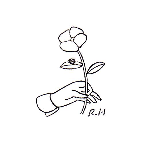 Flower & a Ladybug