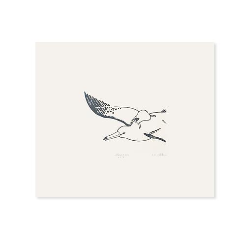 Printing Sheet | Albatross