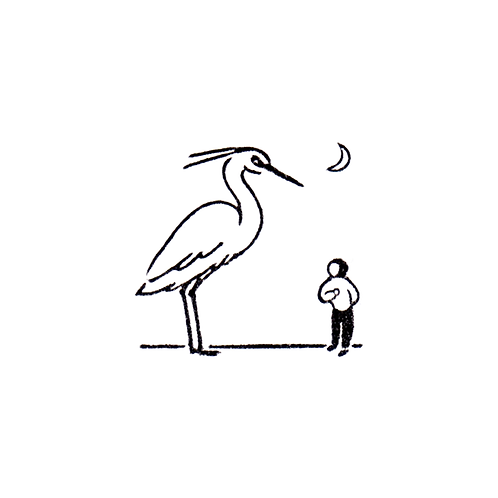 Greet the Snowy Heron