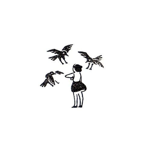 Becoming Friend with Crows