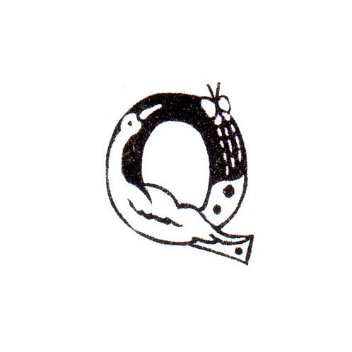 Bird Alphabet - Q