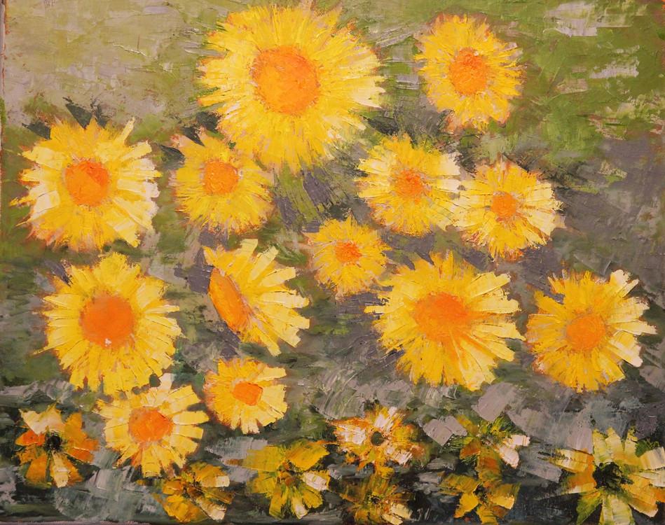 166. Sunflowers  - Tournesols
