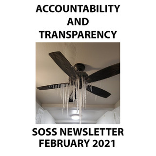 FEBRUARY NEWSLETTER 2021 copy.jpg