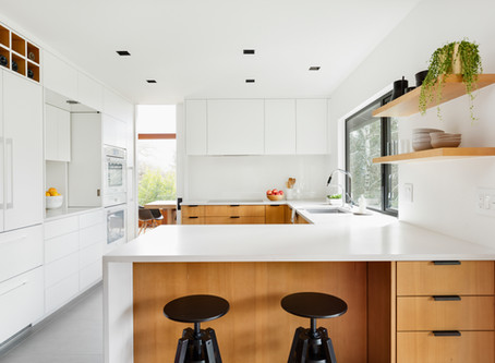 Reveal: SW Modern Final Kitchen Design