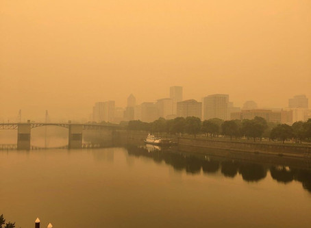 Unprecedented Times: The West Coast is Burning! Here's How to Help.
