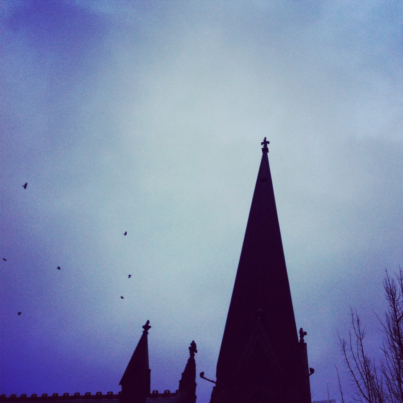 quickandtumble_sigrid_boyer_steeple