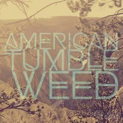 sigrid_boyer_american_tumbleweed4
