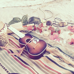 american_tumbleweed_sigrid_boyer_beaches2