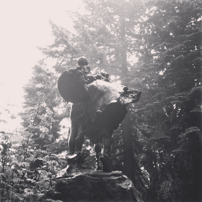 sigrid_boyer_forest_park