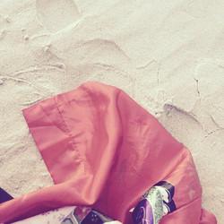 american_tumbleweed_sigrid_boyer_beaches1
