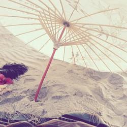 american_tumbleweed_sigrid_boyer_beaches