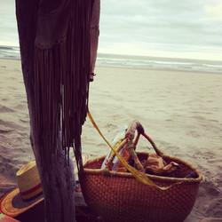 sigrid_boyer_basket_beach