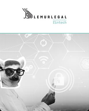 lemurlegal storitve grafike-07.png