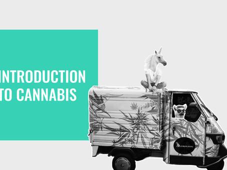 UNDERSTANDING THE MISUNDERSTOOD: Introduction to Cannabis
