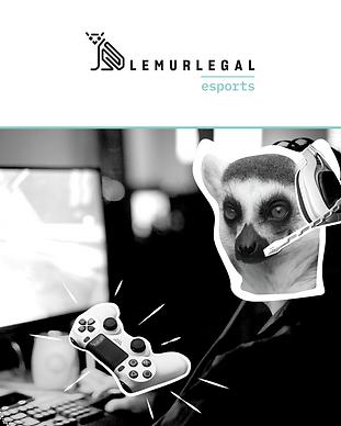 lemurlegal storitve grafike-03.png