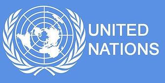 UN-Logo-660x330.jpeg
