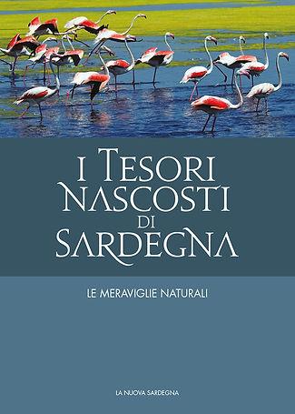 Tesori Cover 02.jpg