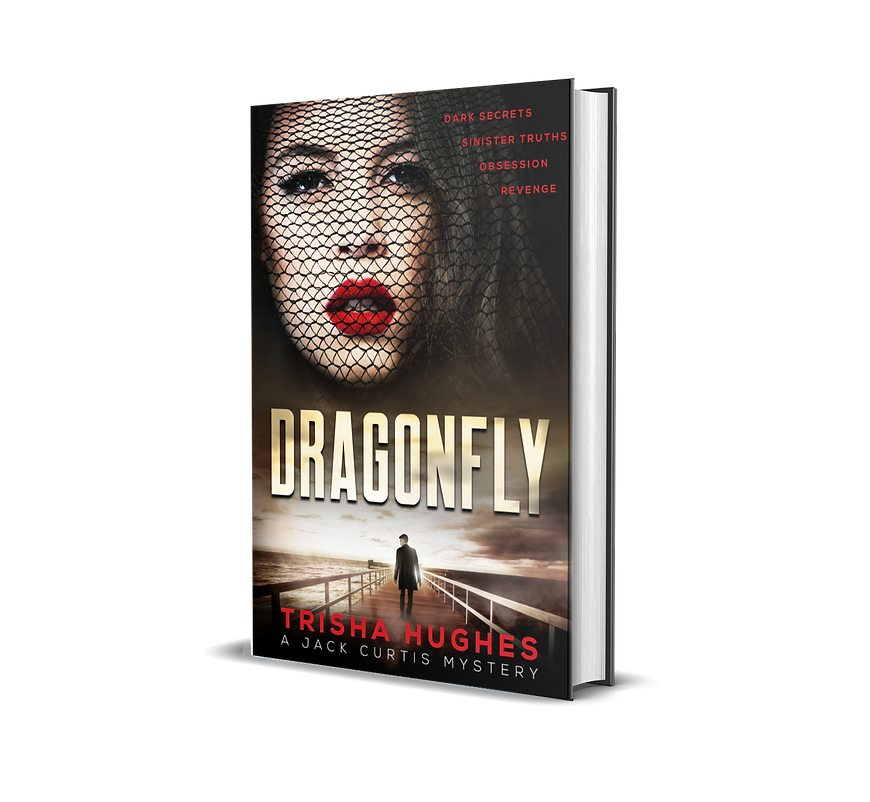 3D mockup of cover.png