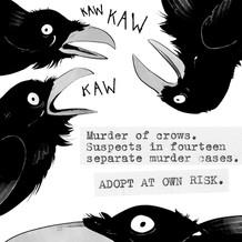 Crows2.jpg