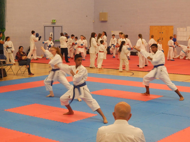 Wadokai England Championships