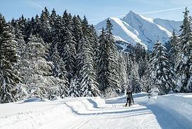 skating_skiing_gruppe_c_TirolWerbung.jpg