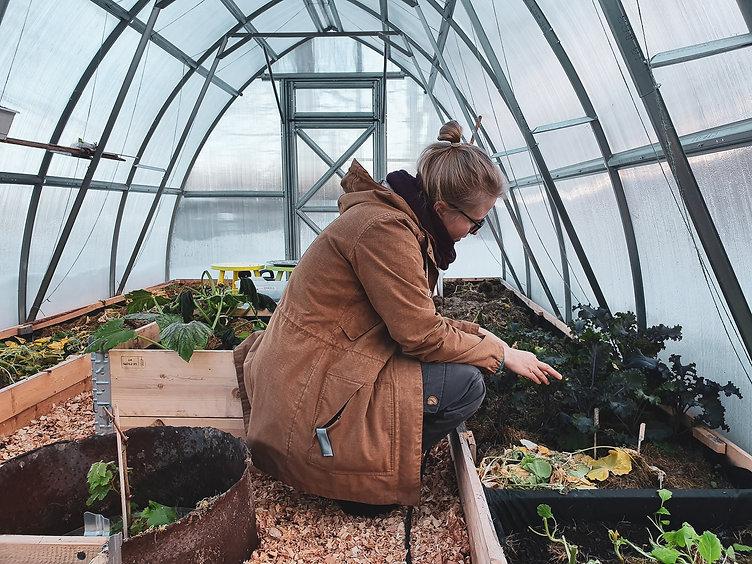 Emma sitter på huk i sitt lilla växthus och tittar på grödorna som ännu växer fint.