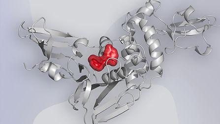 molecola.jpg