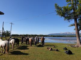 rental horses, Khuvsgul