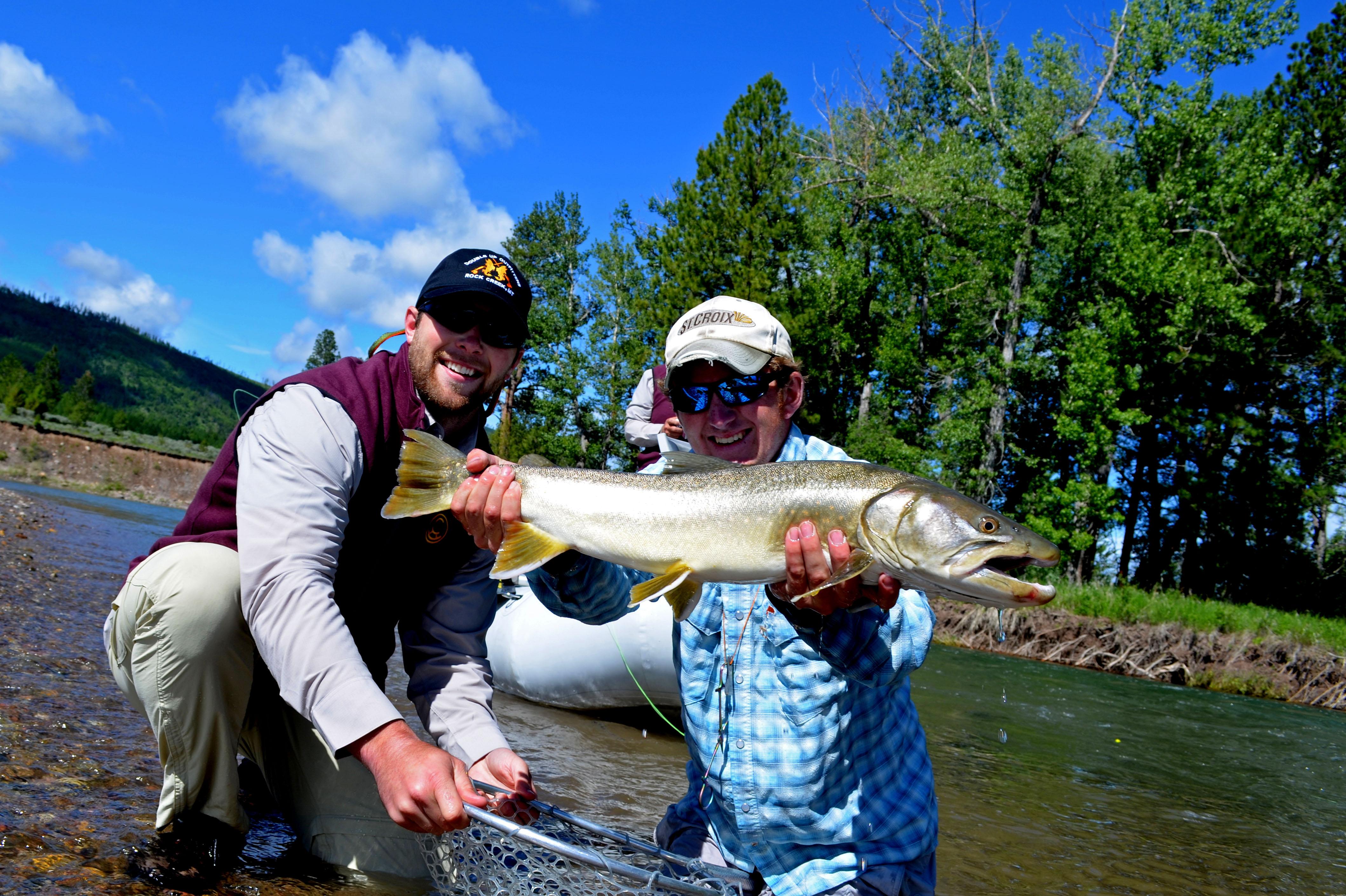 Blackfoot River Bull Trout